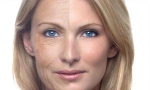 moringa-aging