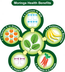 moringa-health-benefits.jpg