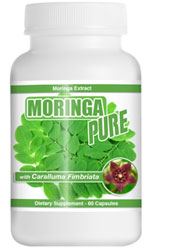 moringa-supplement